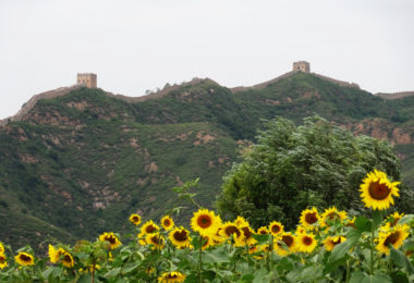 St Leonard's Hospice Great Wall of China Trek