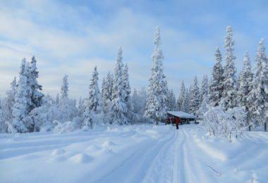 Helen & Douglas Arctic Survival Challenge