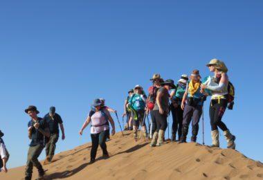 Martlets Hospice Trek Sahara
