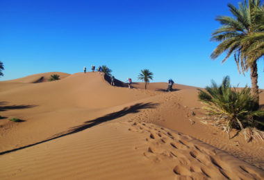 Essex & Herts Air Ambulance Sahara Desert Trek