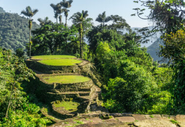 Colombia: Trek to the Lost City